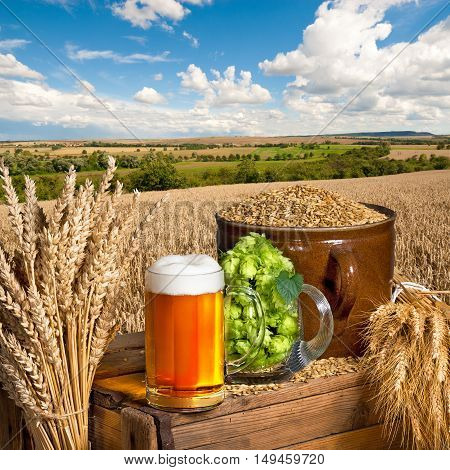 glass of beer with hops and barley