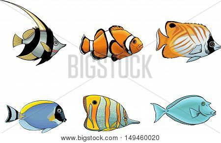 Group tropical sea fish characters colored vector