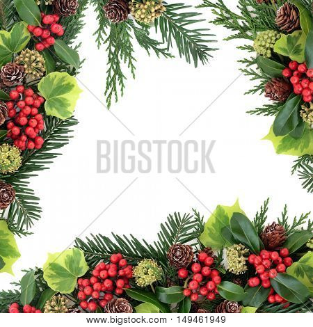Winter and christmas background border with traditional european flora of holly and red berries, ivy, pine cones, cedar cypress and fir leaf sprigs over white background.