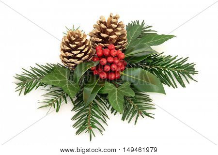 Winter with holly and red berry decoration with, ivy, gold pine cones and fir over white background.