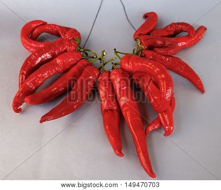 beautiful but very hot pepper chilli on a black background photo for micro-stock