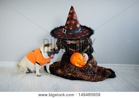 All Hallows Eve. Little girl in a suit of the evil sorcerer sits on a floor and irons an amusing pug. On a doggie have put on an orange sweater. The girl holds pumpkin. Friends are ready to Halloween.