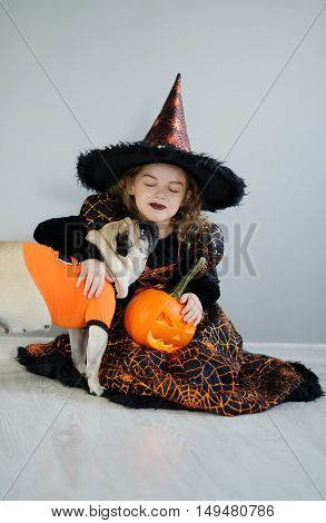 Little girl and her friend - pug are dressed in suits for Halloween. Girl in an image of evil fairy sits on a floor. On a doggie have put on an orange sweater. Girl holds pumpkin and embraces pug.