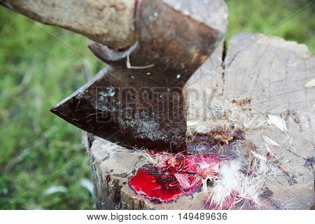 Axe with blood and feathers of birds on a tree stump