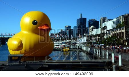 Sydney, Australia - Jan 5, 2013. Giant rubber duck floats in Darling Harbour. Dutch artist Florentijin Hofman's sculptures in unexpected places gives a new perspective on public spaces.