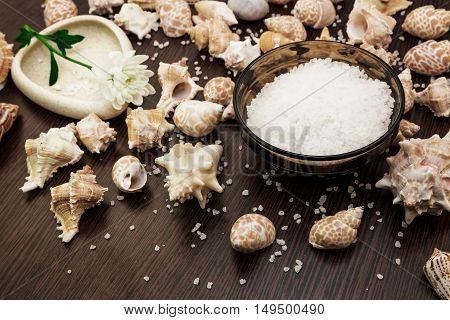 Shell background abstract spa sea salt flower