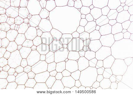 Red bubbles against glass creates abstract polygon background.