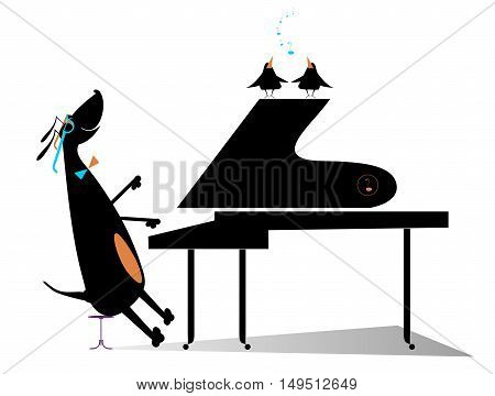 Dog a pianist. Comic dog plays music by piano and birds pipe