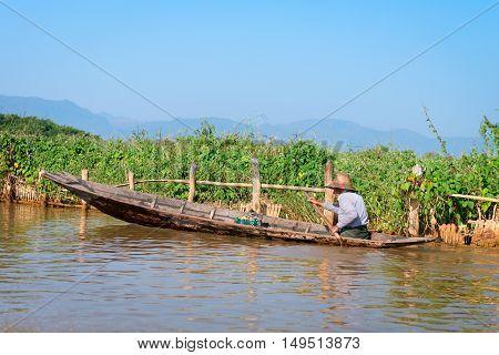 INLE LAKE MYANMAR - 07 JAN 2014: Local man in a traditional canoe rows past floating gardens on Inle Lake in Myanmar.