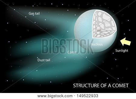 structure of a comet. Diagram showing the nucleus coma and tails. The dust tail is gently curved. it is rich in microscopic dust particles that reflect sunlight. Ion tail is composed of gases broken apart by the Sun's ultraviolet radiation