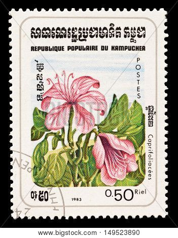 CAMBODIA - CIRCA 1983 : Cancelled postage stamp printed by Cambodia, that shows Honeysuckle flower.