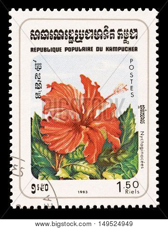 CAMBODIA - CIRCA 1983 : Cancelled postage stamp printed by Cambodia, that shows Miracle flower.