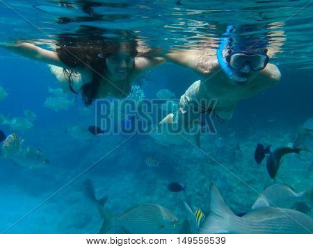 Couple Snorkeling On The Island Of San Andres In The Caribbean Sea. They Feed The Fish Under Water I