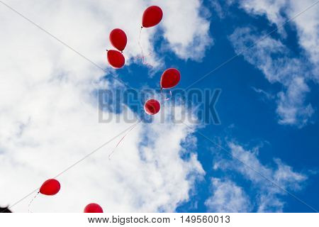 A flock of red balloons, like a flock of birds.