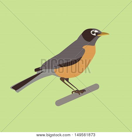 Nightingale bird on a branch. Isolated vector illustration of a flat
