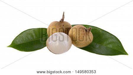 Longan on white background Dimocarpus longan Central of Thailand