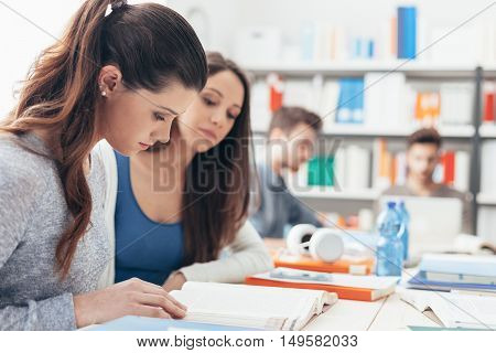 Girls Studying In The Classroom