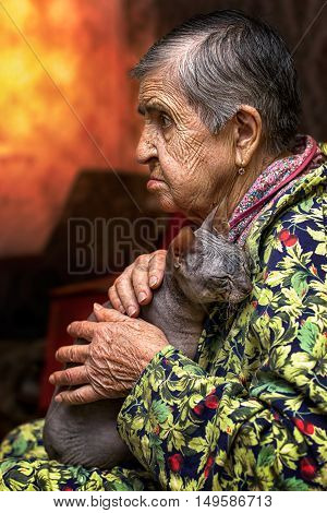 Last faithful friend of old granny. Lonely old aged granny with sphinx cat in her hands