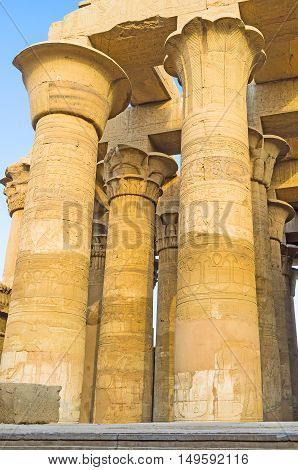 The columns in Kom Ombo Temple boasts different shaped capitals including floral motives.
