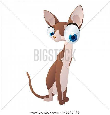 cute vector comic cartoon animal. Cool colorful Cornish rex Cat design