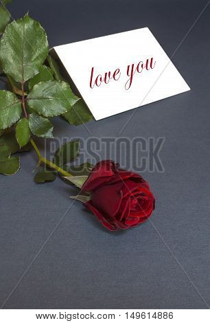 Love you card with red rose. Love you text. Selective focus