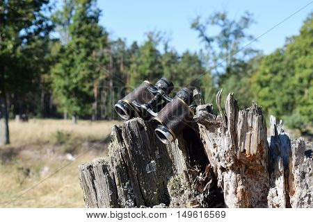 Old german military binocular glasses in forest