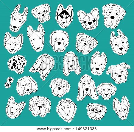 Animals patch collection of purebred dogs. Patches set dog of stickers. Doodle cute, cartoon fun dog. Vector illustration isolated