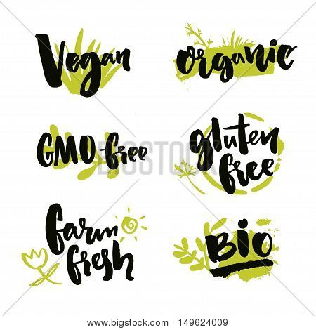 Set of hand drawn stickers for natural products and food package. Vector brush lettering on green spots. Vegan badge, GMO free, farm fresh label. Gluten free and Bio product