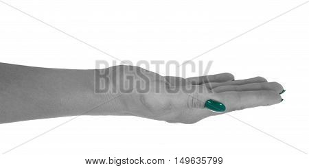Open hand holding anything, natural woman's skin, cyan manicure. Isolated on white background.