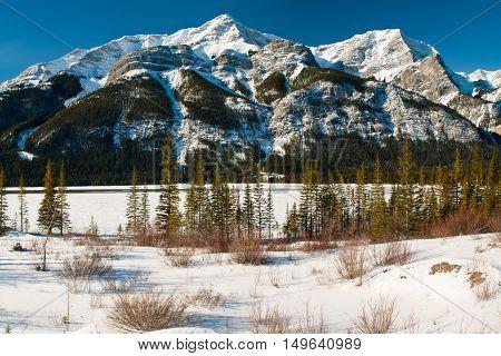 Winter Mountain Views