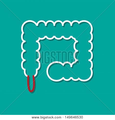 Inflamed appendix in flat style vector design
