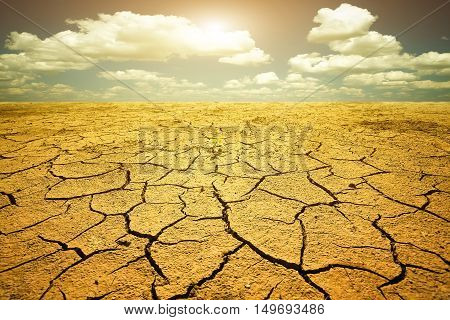 Drought. Cracked dry soil due to climate change.