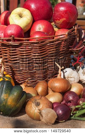 Vegetables and apples in a basket. Autumn day in the home garden. Healthy food for diet. Sunny day.