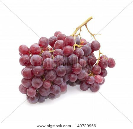 Clusters Or Purple Grapes
