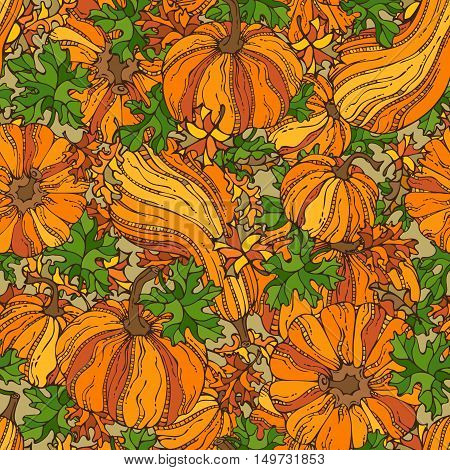 Set of various pumpkins and leaves. Thanksgiving day. Harvest time. Bright boundless background for your design.