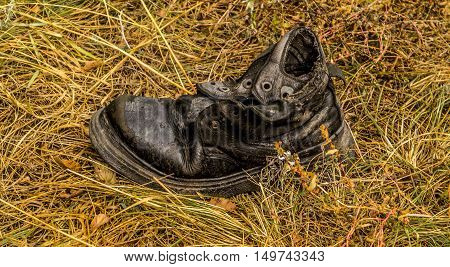 Old shoe, old shoe on the yellow grass background, shoe homeless, holey, worn