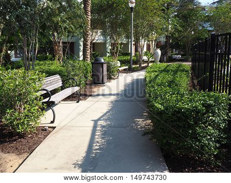 wood park bench by a curved sidewalk. the sidewalk is surround by bushes and trees