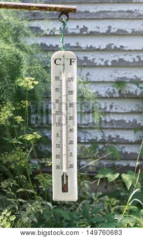 old fashioned weather thermometer with green shrubs against an old wall with peeled paint