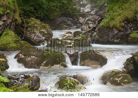 cascade of small waterfalls - fast mountain river flowing among mossy stones and boulders in green forest.