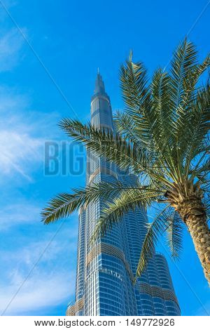 Dubai, UAE - May 1, 2013: Burj Khalifa with palm in the blue sky. Burj Khalifa is a tallest building in the world and one of the symbols of Dubai, located in Downtown Dubai near Dubai Mall.