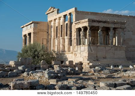 Erechtheion temple Acropolis of Athens decorated with caryatides statues.