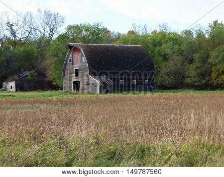 An abandoned farmstead with a abandoned barn and other buildings.