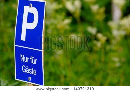 a blue parking sign with a big P on it on green background