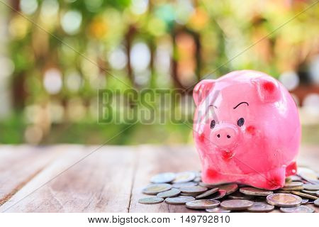 Pink Piggy Bank And Coin Pile On Wooden Plank. Savings Concept.
