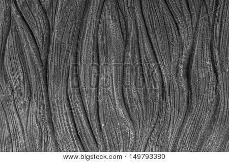 Background Gray Elephant Skin.