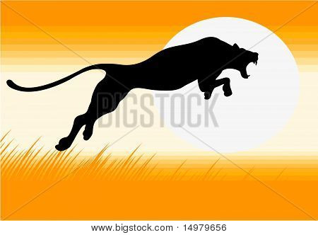 Silhouette of black panther