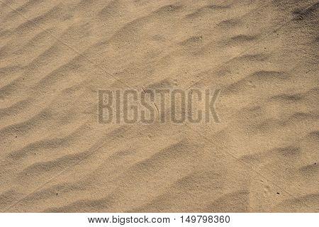 Small Lines Of Desert Sand