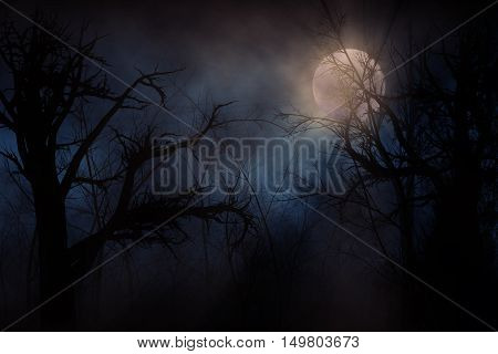 Illustration of night forest alight with bright moon in clouds
