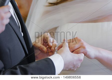 Wedding Hands And Ring