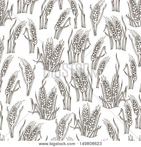 Vector Seamless Sketch Wheat Pattern.